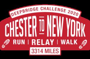 Deepbridge Challenge